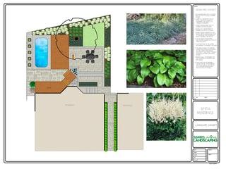 2D Lanscape Plan Coloured