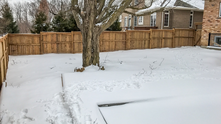 Backyard Landscape Before Construction